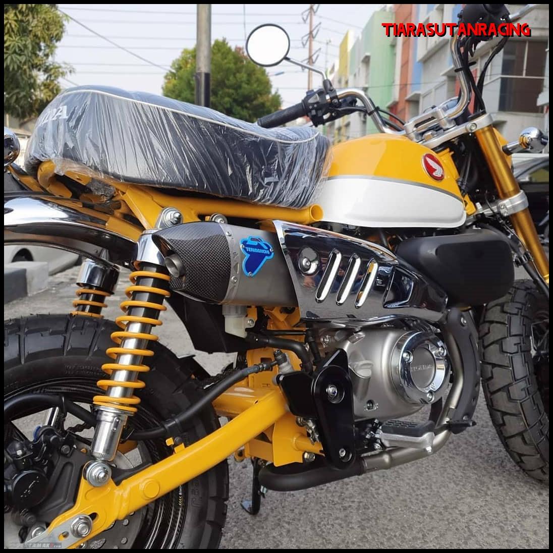 Knalpot Honda Monkey 125 Termignoni